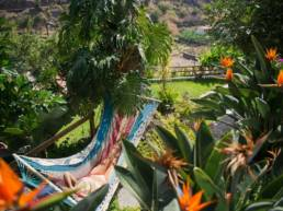 Piscina y jardines
